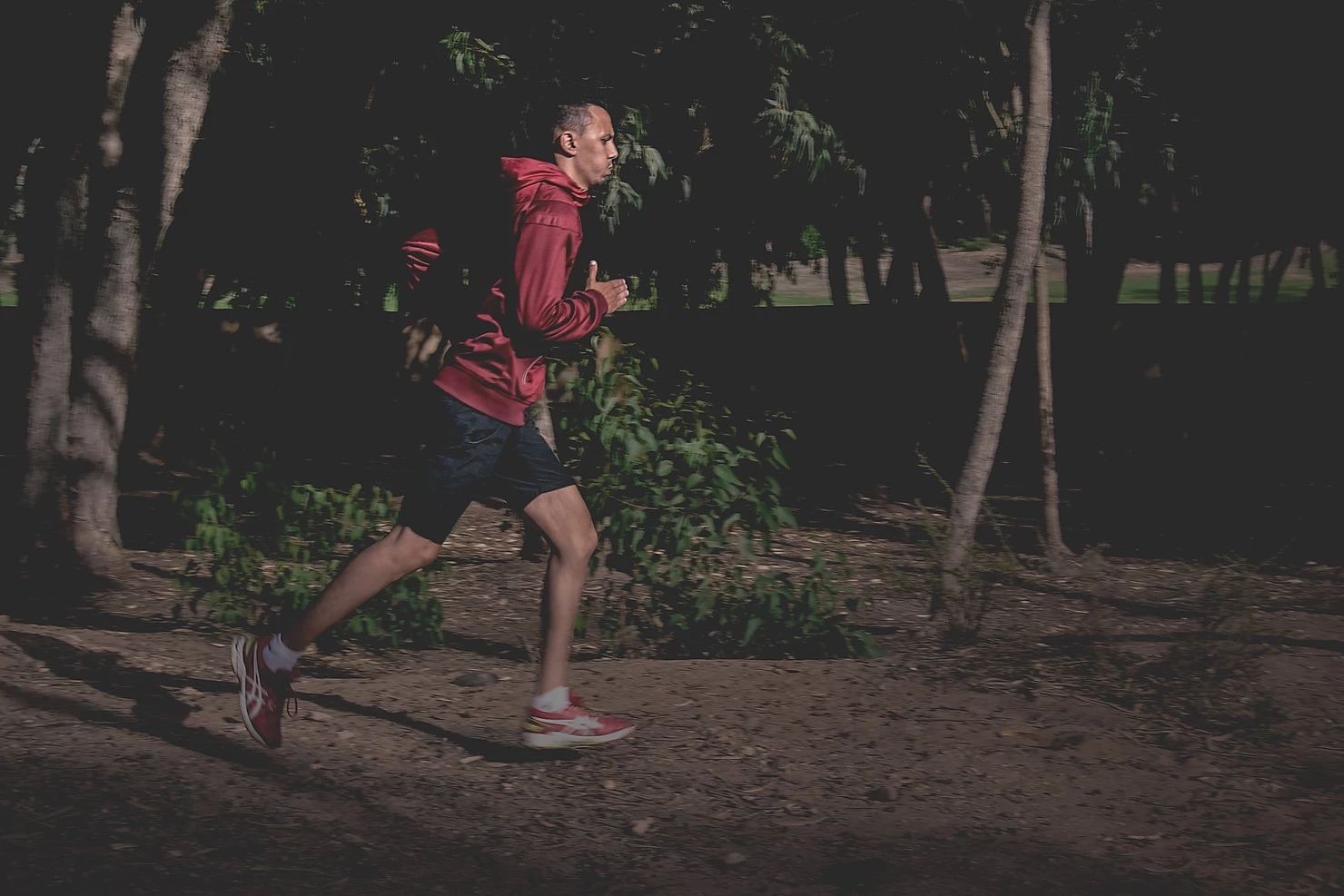 Duration, Speed or Frequency In Exercise May Not Matter